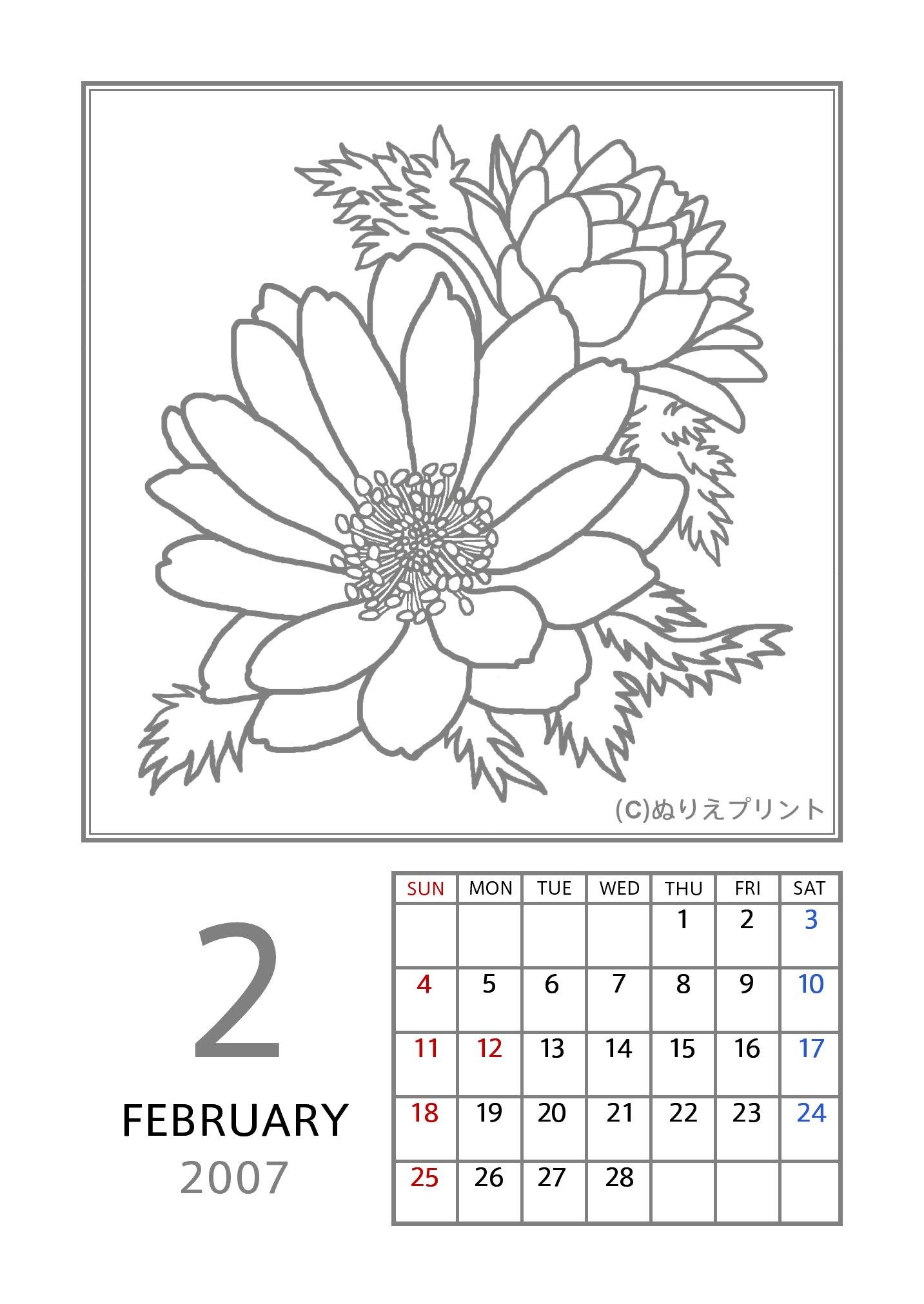 カレンダー カレンダー フリー 印刷 : ... 平成19年/花のぬりえカレンダー