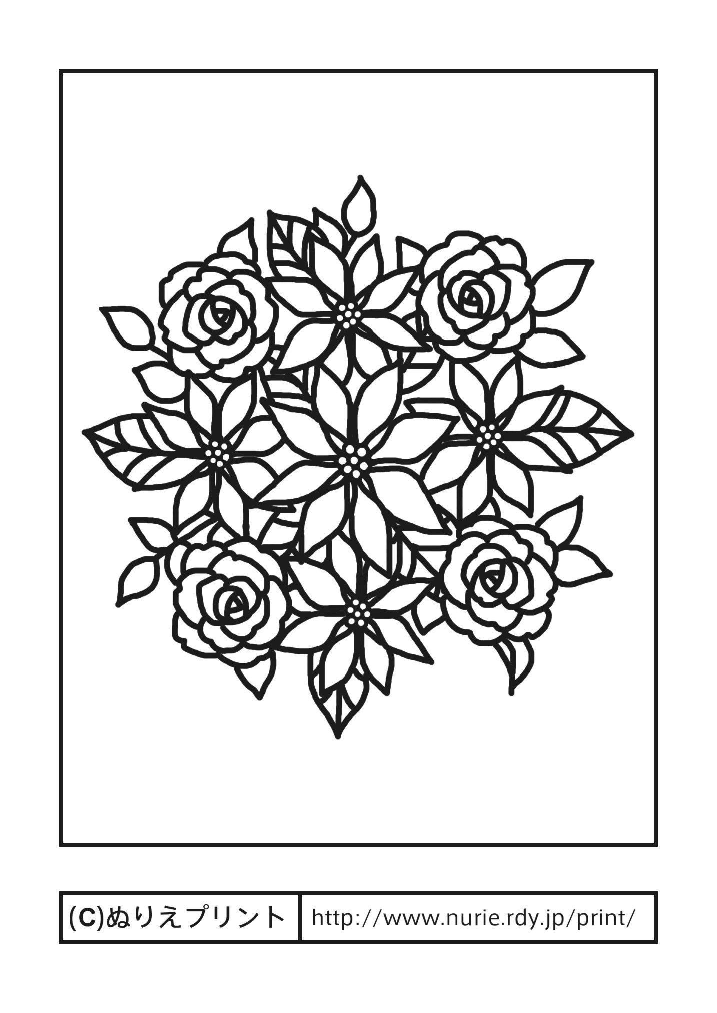 ポインセチアとバラ(主線・黒)/冬・クリスマスの花/無料塗り絵イラスト