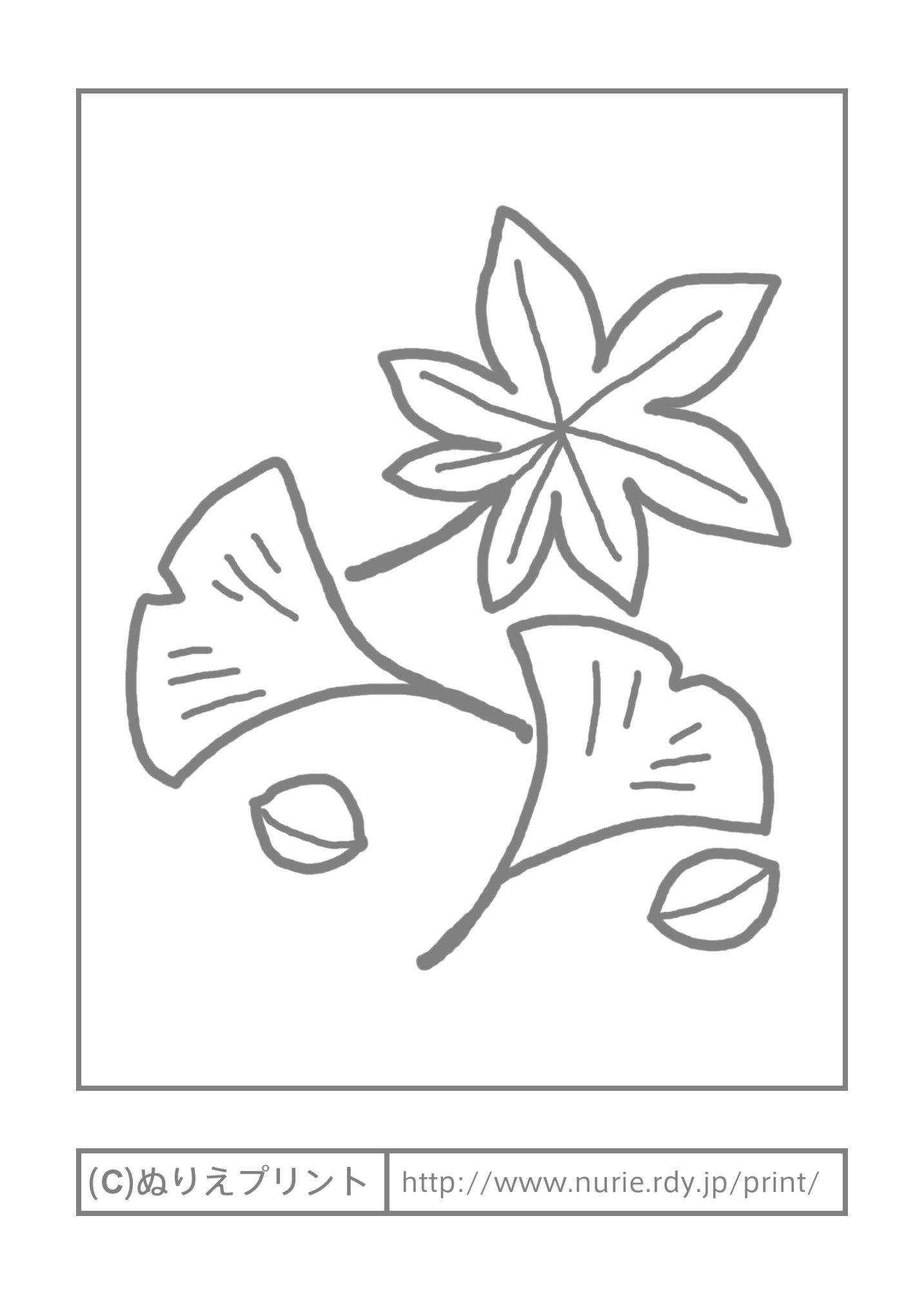 おちば(主線・グレー)/落ち葉 ... : 塗り絵 ダウンロード : すべての講義