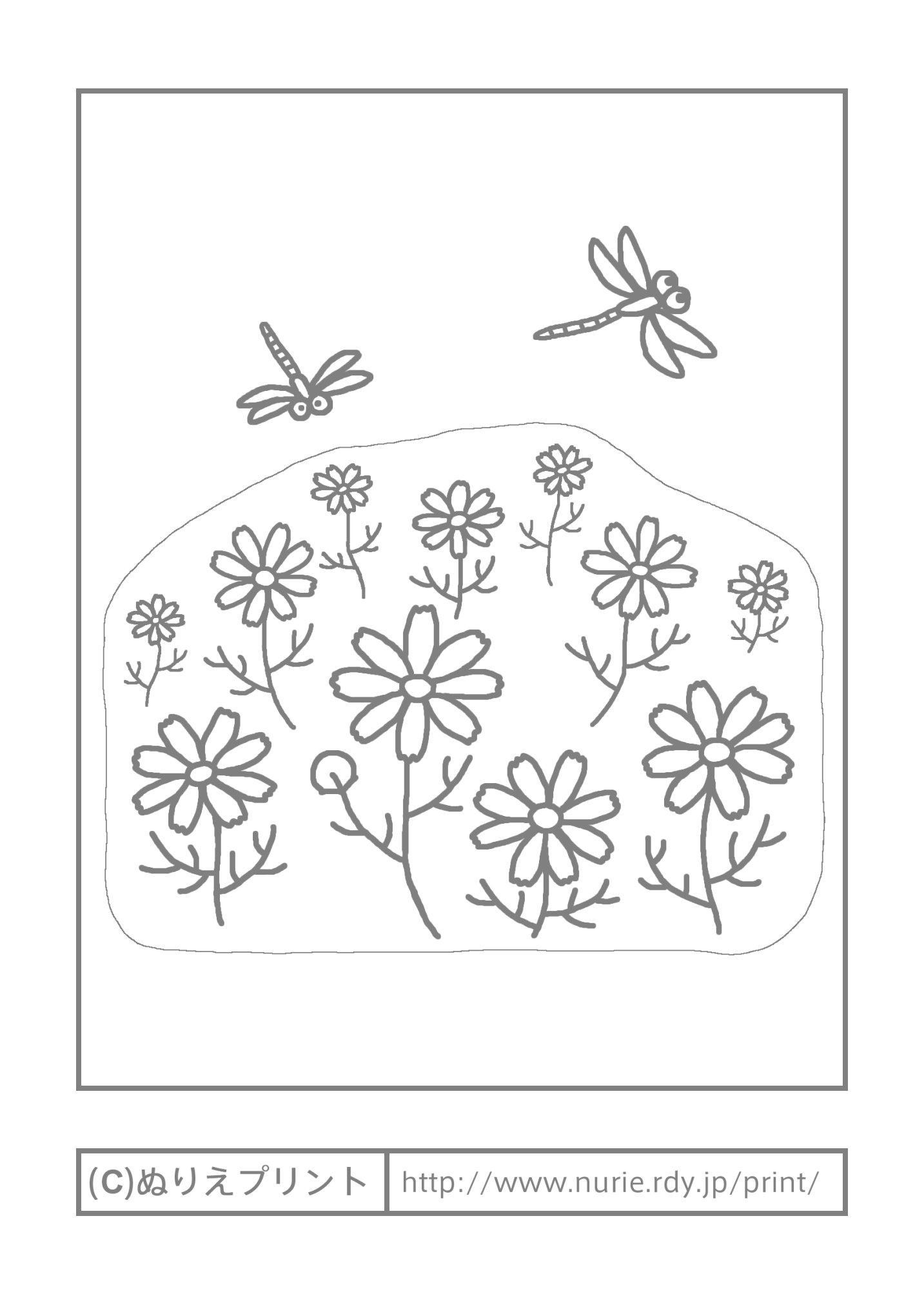 コスモスと赤とんぼ(主線・グレー)/秋の季節・行事/大人の塗り絵【ぬりえプリント】