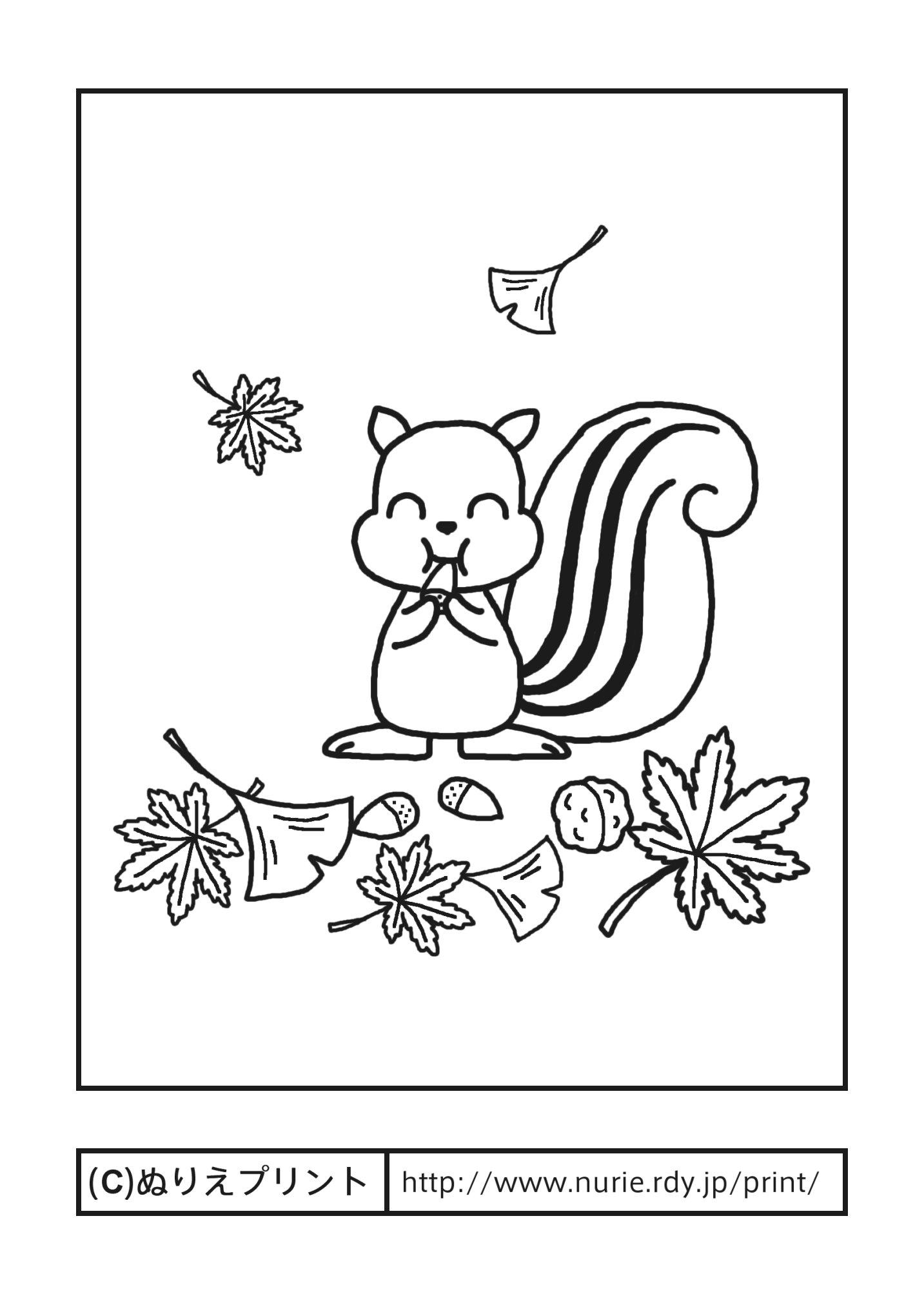 ... 季節・行事/大人の塗り絵【ぬ : 季節のぬりえ : すべての講義
