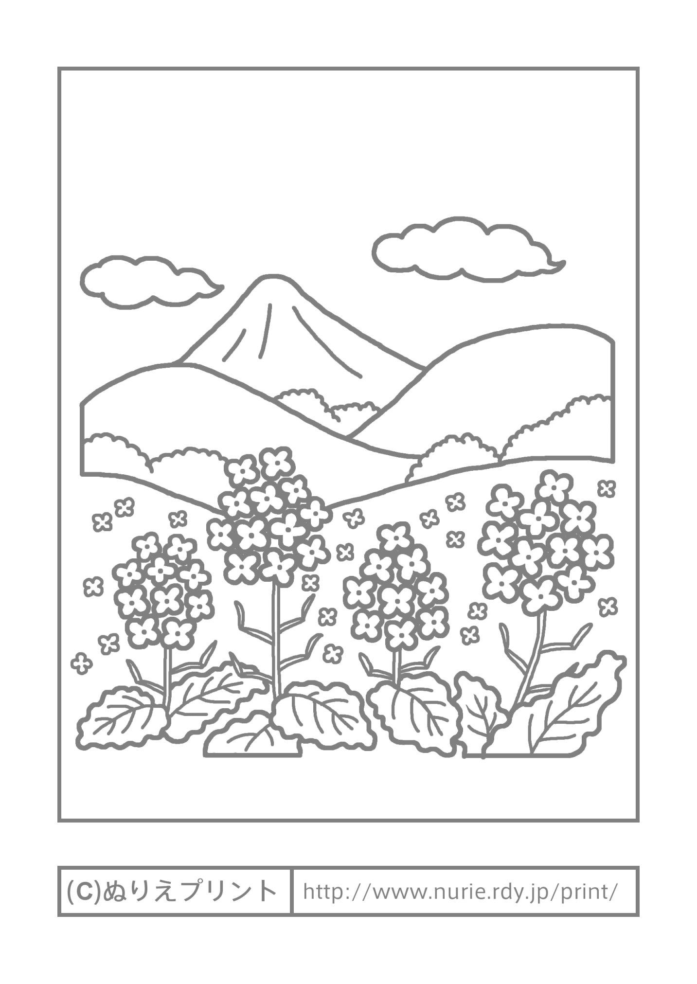 ... 季節・行事/大人の塗り絵【ぬ